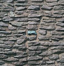 Anasazi Architecture 03 von Luc Novovitch