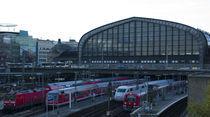 Hamburg Hauptbahnhof by Jose Antonio Muñoz Bolívar