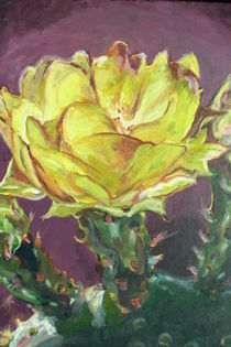 Desert Blossoms II von ALEKSANDRA BUHA