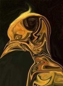 Birdman von Melanie Plummer