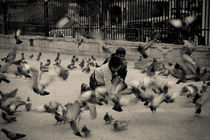 The Prank and the Birds by Samar Jha