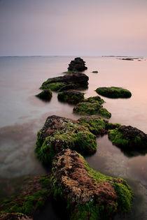 Infinity by Georgi Bitar