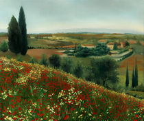 Tuscan Poppies by Leah Wiedemer