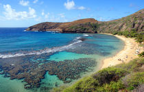 Hanauma Bay Oahu Hawaii by Kevin W.  Smith