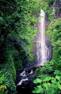 Wailua Falls Maui Hawaii von Kevin W.  Smith