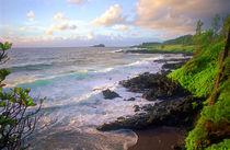 Hana Coast Maui Hawaii von Kevin W.  Smith