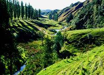 Forgotten World Highway North Island New Zealand von Kevin W.  Smith