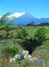 Mt.Egmont Taranaki New Zealand by Kevin W.  Smith