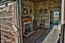 Slave Quarters cabin at plantation along Mississippi River in Louisiana von James Dricker