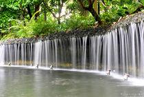 Falls by Jaymie Sandro Gomez