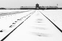 KZ Auschwitz-Birkenau von Norbert Fenske