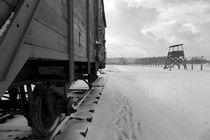 KZ Birkenau by Norbert Fenske