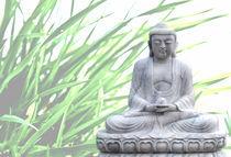 buddha (gras) von hannes cmarits