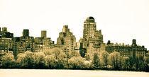 New York Coastline by Sabrina  Hall