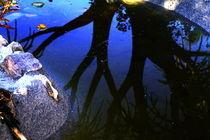Wasserspiele by Susanne Brutscher