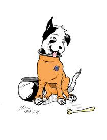 Moon Dog von Murra MacRory