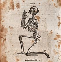 Skeleton von Mark Strozier