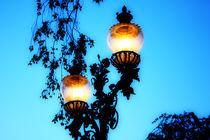 Lantern von Agnieszka  Grodzka