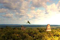 Quetzal über den Pyramiden von Tikal von Mellieha Zacharias
