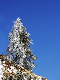 Snowy stree and sky von George Panayiotou