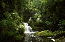 A-mclean-falls-new-zealand-02070502