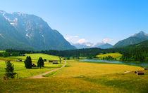 Alpine Farmland Bavaria Germany von Kevin W.  Smith