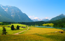 45-alpine-best-farmland-06100604