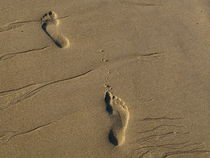 Footprints-USA by Nancie Martin DeMellia