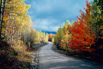 Great New England Autumn Road-USA by Nancie Martin DeMellia