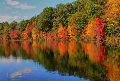 Fall-reflection-color