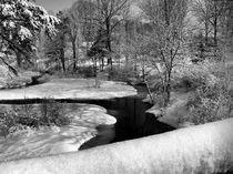 Winter Stream-USA by Nancie Martin DeMellia
