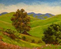 Barn Under The Eucalyptus by Steven Guy Bilodeau