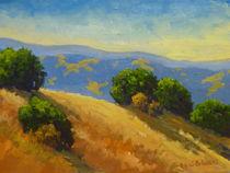 California Golden by Steven Guy Bilodeau