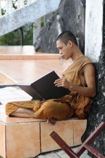 Mönch bei der Arbeit von Julia  Berger