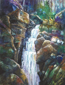 Silver Falls by Patricia Allingham Carlson