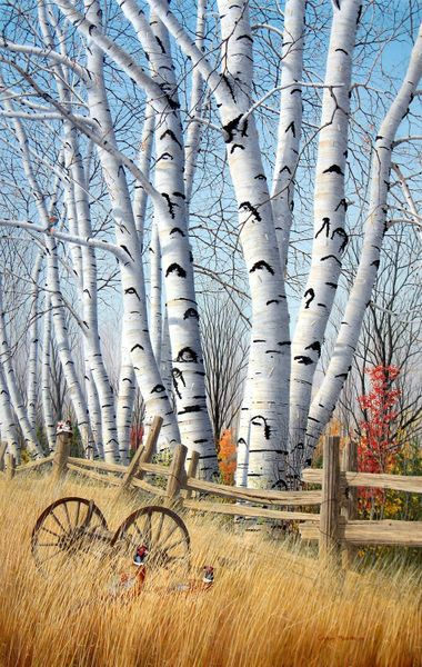 Birchtrees-in-october-egg-tempera-on-board-71-x-46-cm