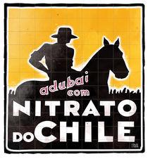 Nitrato-chile-v2