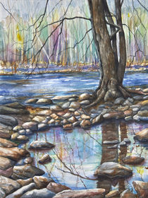 Early Spring, Ralph Stover Park von Patricia Allingham Carlson