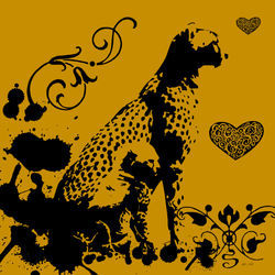 B-cheetah1