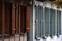 Window shutters by holka