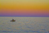 Baja Twilight by Vance Fox