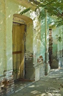 Baja Door One by Vance Fox