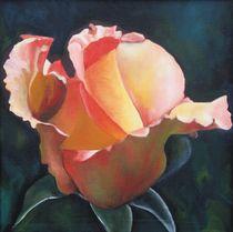 Lady rose von Lalit Kumar Jain