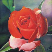 Red Rose von Lalit Kumar Jain