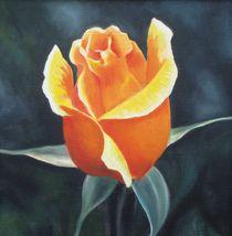 Rose bud, yellow orange by Lalit Kumar Jain