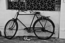 The Bicycle Thieves by Samar Jha