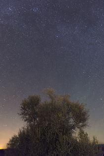 Alqueva Dark Sky Reserve by Andre Vicente Goncalves