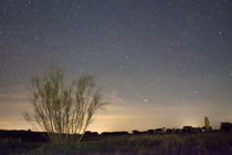 Shooting Star by Andre Vicente Goncalves