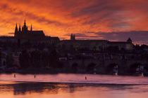 Prague von Andre Vicente Goncalves
