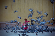 The Girl and the Birds' Take Off by Samar Jha